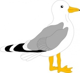 bird,animal,seagull,cartoon,media,clip art,public domain,image,svg