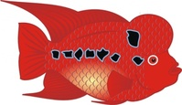 flower,horn,fish,media,clip art,public domain,image,png,svg,cichlid,aquarium,water,flowerhorn,red,animal