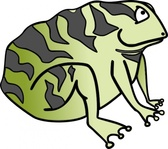 toad,animal,amphibian,frog,cartoon,media,clip art,public domain,image,svg