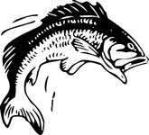 jumping,fish,animal,fishing,leaping,black & white,contour,outline