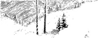 snowy,tree,snow,scene,media,clip art,externalsource,public domain,image,png,svg