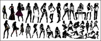 sex,variety,fashionable,female,silhouette,vector,material