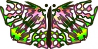 butterfly,from,star
