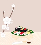 sushi,graphics,food
