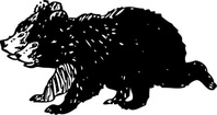 black,bear,cub,animal,mammal,media,clip art,externalsource,public domain,image,png,svg