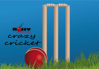 cricket,ball,cricket ball,wicket,rajeev,kamal,sport,play ground,play,ground