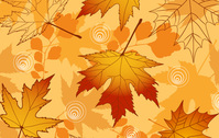 background,autuumn,autumnal,leaf