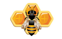 3d,bee,animal,honeycomb,insect