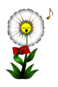 flower,flor,fleur,plant,planta,plante,daisy,margarita,marguerite,pansy,pensamiento,pensée,perennial,perenne,weed,maleza,malezas,mauvaises,herb,seed,semillas,granos,grain,sing,singing,canto,cantando,chant,decorative,decorativo,decoration,decoracion,music,musica,musique,book,libro,coro,pensée,weed,de