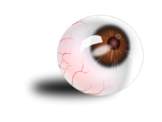 eyeball,eye,brown,blood,image,svg,media,clip art,human,mh