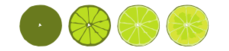 lime,citrus,food,fruit,green,colour,color,tropical