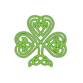 celtic,shamrock,plant