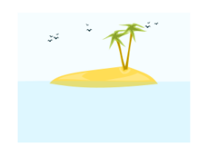 island,summer,palm,sea,beach,bird,tropical,ocean