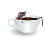 rat,coffee,animal,cup