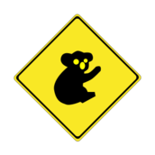 roadsign,traffic,warning,koala,australia,roadsign,traffic,warning,koala,australia