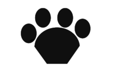 unchecked,cat,paw,animal,pet,wildlife,domestic,domestication,nature,fauna,cattus,feline,felinae,house,friend,partner,eye,media,clip art,public domain,image,png,svg,paw,pet,paw,pet