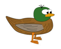 duck,bird,cartoon,mallard,animal,media,clip art,public domain,image,svg