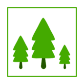 tree,green,ecology,icon,growth