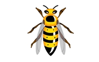 wasp,hornet,animal,insect,bee,yellow,black,fly,flying