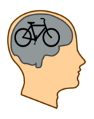 mind,brain,head,profile,think,creative,exercise,quote,cycle,bicycle,bike,pink,grey,matter,thinking,creating,work,job