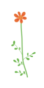 flower,orange,six,petal,green,branch,long,stem,leaf,cute,design,element,floral,decoration,christmas,round,tiny,adorable,plant,cartoon,nature,illustration,clipart,clip art