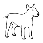 media,clip art,public domain,image,svg,bullterrier,bulli,dog,outline,animal,mammal,colouring book